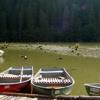Wąwozy i doliny Rumunii – wąwóz Bicaz i dolina rzeki Jiu