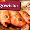 Jak Szwedzi rozwiązali problem dzikich targowisk – Stora Saluhallen i Feskekörka